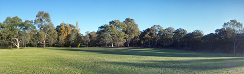 Playing Field in the Torrens Linear Park